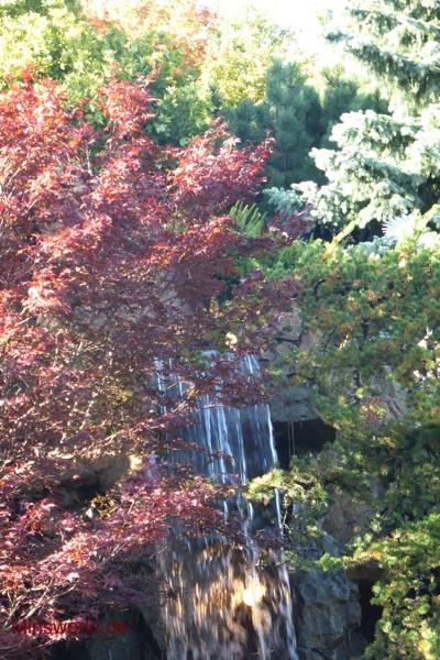 Montreal Olympiapark Botanischer Garten